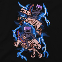 Minecraft Skeleton Riders